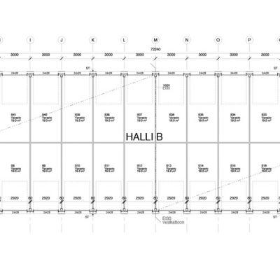 Halli B